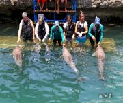 Fotos de Acuario y museo del mar del rodadero_7