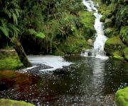 Fotos de Cueva de los Guacharos_3