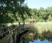 Fotos de Parque de la isla Salamanca_1