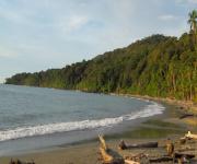 Fotos de Parque Nacional Natural Isla Gorgona_0