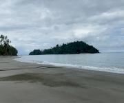 Fotos de Playa Palmeras Isla Gorgona_2