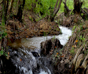 Fotos de Parque Natural Macuira_5