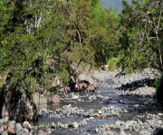 Fotos de Ecoparque Rio Pance_5