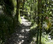 Fotos de Parque Ecológico Siete Cueros_3