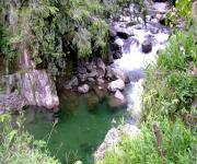 Foto_10_Parque Natural Nacional Tatama