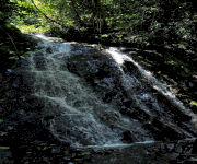 Fotos de Cascada la Estrella_4