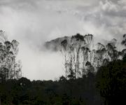 Fotos de Parque arqueológico y ecoturístico Boquemonte_5